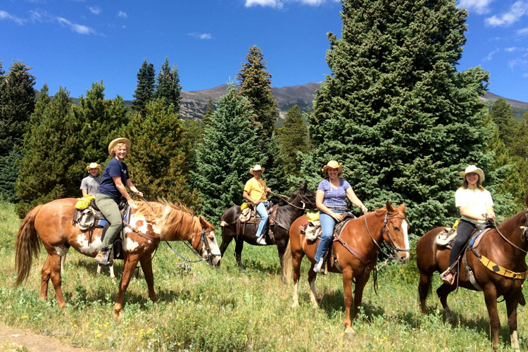 Climb mountains on horseback for a view from the top